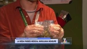 Politically Speaking: The La Mesa Medical Marijuana Discussion