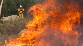 Photos: San Diego Firestorm 2014