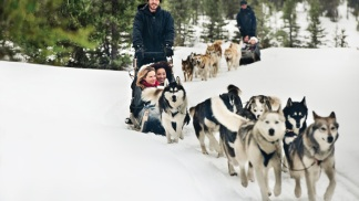 Alberta's Top Six Winter Adventures