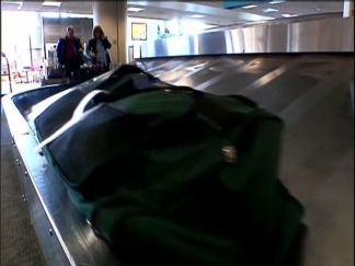 Bedbugs Turn up at Lindbergh Field