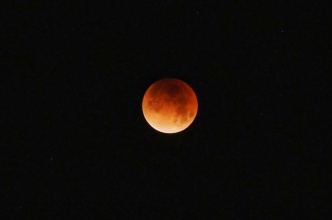 Super Blood Wolf Moon Eclipse: Here's What to Know