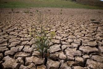 Californians Miss Water Conservation Target