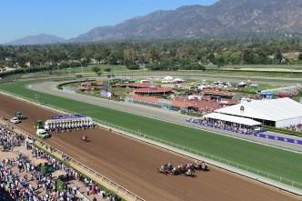 Task Force to Investigate Santa Anita Horse Deaths