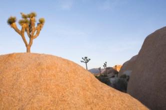 Kids Sent into Desert as Punishment: Deputies