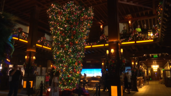 Upside Down Christmas Tree at Iconic Hotel Gets Mixed Reviews