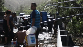 Puerto Rico Issues New Data on Hurricane Maria Deaths