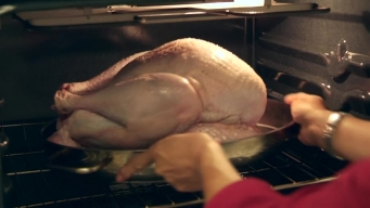 Where to Get Turkey Cooking Help