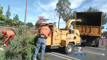 Santee Clears Storm-Damaged Trees