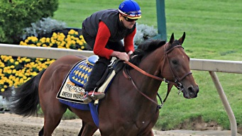 American Pharoah Favored to Win Preakness