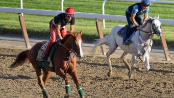 Why Winning Triple Crown Is so Tough