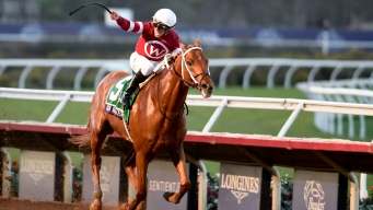Gun Runner Snatches $6M Purse at Breeders' Cup Classic