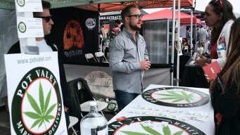 Regulators: Pot Deliveries Can Be Made Throughout California