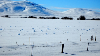 Rare Weather Event Produces Spontaneous Snowballs in Idaho