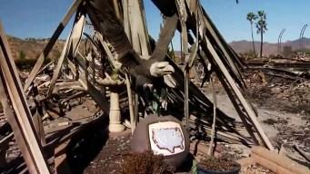 American Eagle Statue Survives Lilac Fire