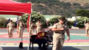 Boy Dies Day After Being Made Honorary Marine