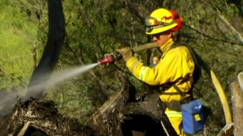 Cal Fire Beef Up Fire Preps