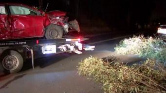 Car Slams Into Fallen Tree in Mira Mesa