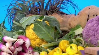 Conference Helps Aspiring Farmers Market Vendors