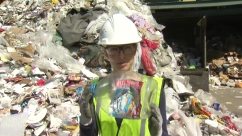 Dagmar Sorts Recycling Materials