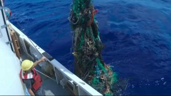 Down to Earth with Dagmar: Great Pacific Garbage Patch