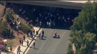 Protesters Halt Under Freeway in El Cajon