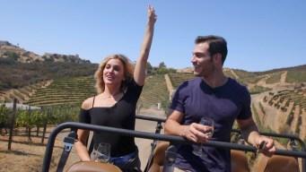 Malibu Wine Safari With Dr. Evan Antin