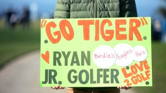 Tiger Woods Bumps Business, Fan Attendance at Golf Tourney