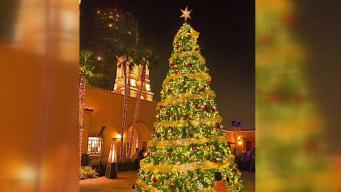 Giving Tree Lighting Ceremony in Downtown San Diego