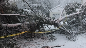 Northeast Tries to Dig Out, Power Up After Deadly Storm