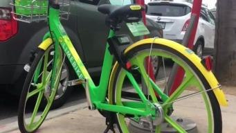 Limbike Bicycles Damaged in Imperial Beach