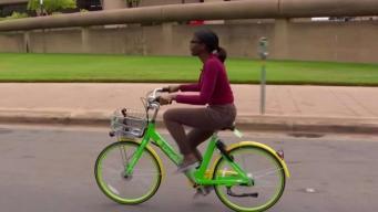 Dockless Bike Critics Call on Leaders to Halt Growing Trend