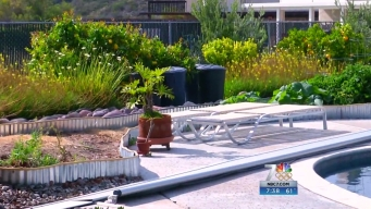 Bonita Couple's Drought-Friendly Yard Wins Landscape Contest