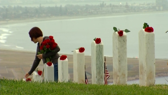 Roses Honor Fallen Military in San Diego