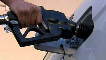 Low Gas Prices Forecast For 2016