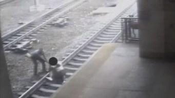 NJ Transit Officer Pulls Man Off Tracks Seconds Before Train Arrives
