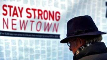 Will Newtown Prompt Gun Reform in Washington?