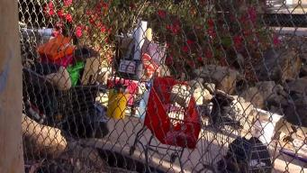 Non-Profit Stops Cleanups Due to Hep. A Threat