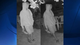 Camera Catches Suspected Arsonist Who Set Fires in OB and Point Loma