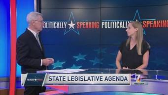 Politically Speaking: State Legislative Agenda