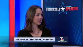 Politically Speaking: Plans to Redevelop Park