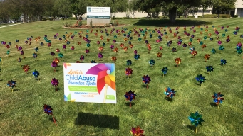 Pinwheels Pay Tribute to Child Abuse Survivors