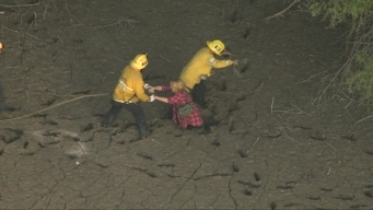 Horse and Two Women Rescued From Mud Near Hansen Dam