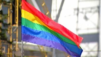 San Diego Pride Festival to Start Using Metal Detectors