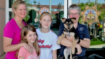 Family Adopts Puppy Rescued From Ravine