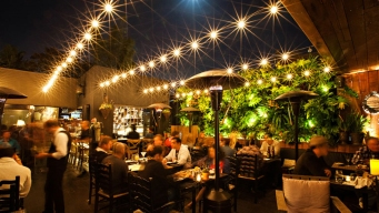 Patio Group: 4 Restaurants Stay Open, Many Others to Shutter