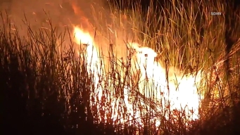 Firefighters Battle Stubborn Fire in Riverbed