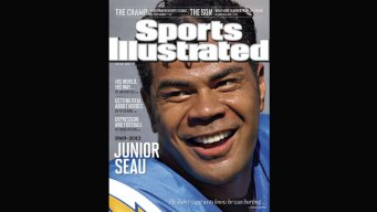 Seau Never Let on He Was Hurting: Report