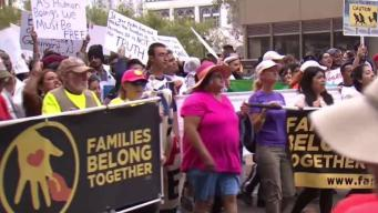Thousands March to Criticize Migrant Family Separations