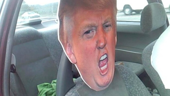 Carpool Lane Trip With Trump Cutout Leads to Ticket