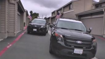 Vista Woman Stabs Husband With Steak Knife: Deputies